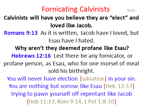 calvinist fornication