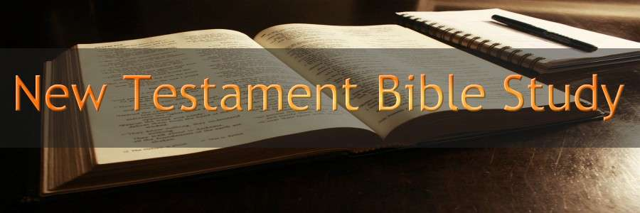 NEW TESTAMENT BIBLE STUDY BANNER 300X900