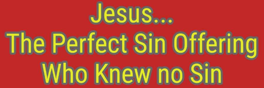 Jesus the Perfect Sin Offering Who Knew no Sin Old Testament